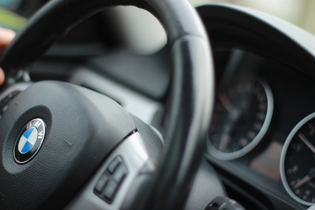 motorista-profissional