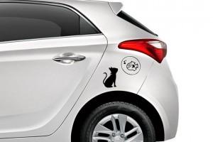 Remover adesivo de carro
